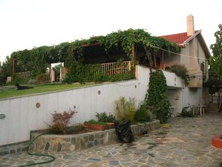 Evia cottage photo - the house from the garden