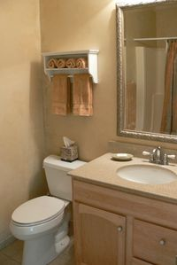 Newly remodeled guest bathroom with shower