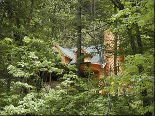 Bryson City cabin photo - Carolina House nestled in the Natahala National Forest foliage