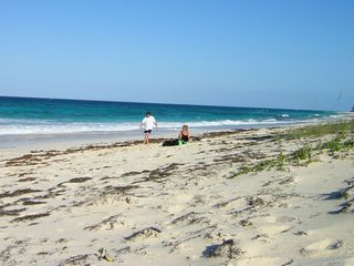 Great Guana Cay cottage photo - Beach