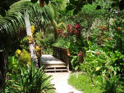 Stroll through the colorful vegetation