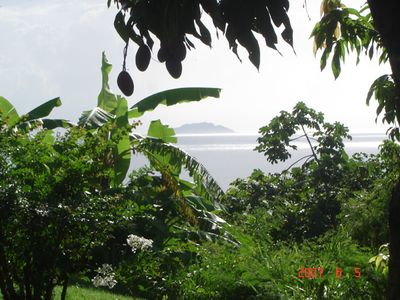 side yard view of Desecheo