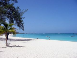Grand Cayman condo photo - Plantana Beach looking toward Georgetown