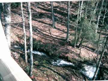 Partial view of rushing creek and waterfalls in front of cabin on property