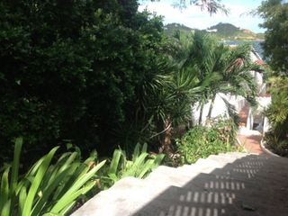 Cupecoy apartment photo - Steps descend past tropical gardens leading to the villa entrance.