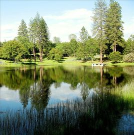 Ahwahnee cabin rental - Springtime view of Pond de Rosa Oaks property- come enjoy the view