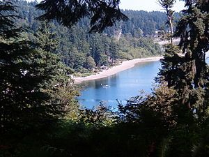 Bremerton apartment photo - Illahee State Park located just a short drive from the apartments