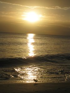 Sunset at Lowdermilk Park Beach - Naples
