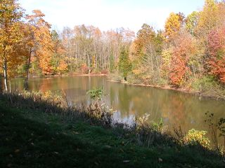 Fennville house photo - The pond in the Fall