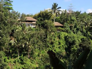 A house in the jungle - Ubud villa vacation rental photo