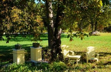 our honey bees under the hickory trees in the north field