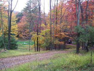 Woodstock cabin photo - Our driveway in the fall