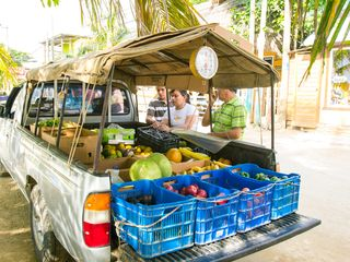 "The best ""supermarket"" in West End, The Fruit Truck - Roatan villa vacation rental photo"
