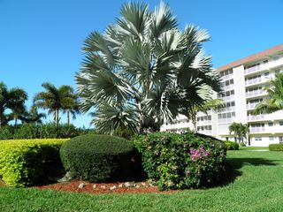 Bonita Springs condo photo - Pool & Beach