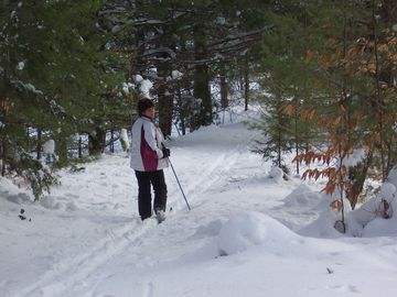 Many cross country ski trails and hiking trails direct access from cabin