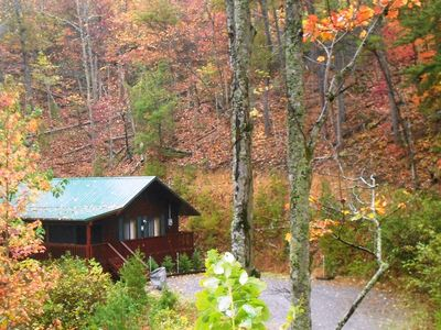 Private Wears Valley/Pigeon Forge cabin, Fall Foliage in the Smoky Mountains.