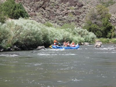 Go on an afternoon rafting trip