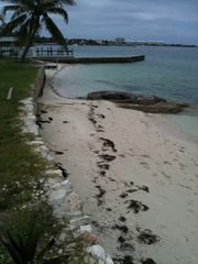 Nassau & Paradise Island cottage photo - beach at the house