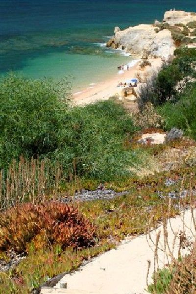 Private path to beautiful beach