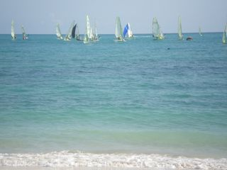 Grand Bahama Island cottage photo - Sail Boats from around the world on our Beach at Diamonds