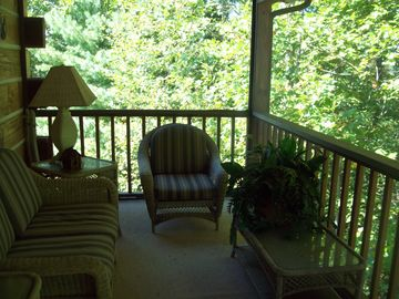 "Secluded Screened Back Porch feels like a ""Tree House""!"