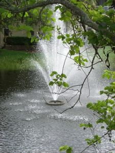 Fountain view