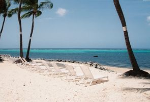 Beach and Reef