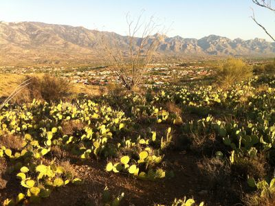 Tucson house rental - SaddleBrooke...see it nestled in the valley below?