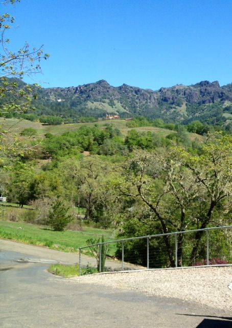 Calistoga STUDIO Rental Picture