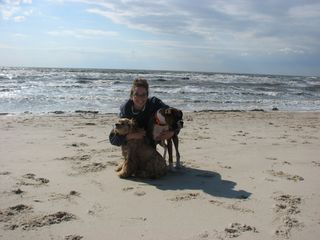 Cape May cottage photo - Owner Jamie with her dogs Rocky and Buddy on the Bay beach at the end of the blo