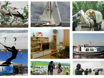 Bird watching, boating, bicycling, horse+wagon and kite surfing and walks IN sea