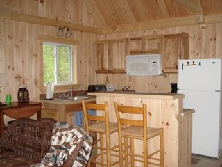 Modern kitchen with all appliances - Franklin cabin vacation rental photo