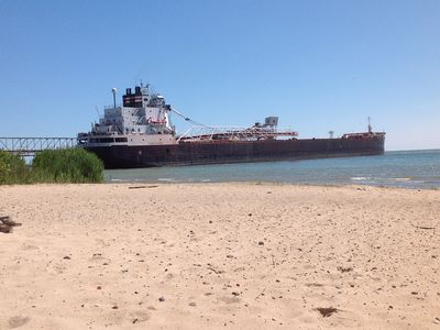 Freighters are sometimes seen at the dock down the road. Very impressive to see.
