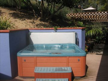 6 person chemical-free hot tub
