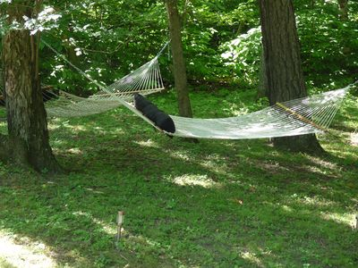 Relax in the hammocks after a day of swimming and fishing.