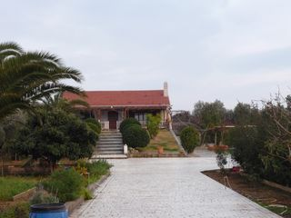 Evia cottage photo - looking at the house from the main entrance