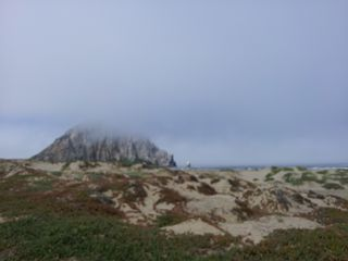 Morro Bay cottage photo - View from your beach of the rock, the wonderful Clositer's, a local's secret.