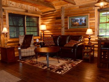 Lake Nantahala cabin rental - Living Area