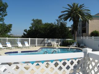 Indian Shores condo photo - Relax by the Pool on the Intercoastal Waterway.