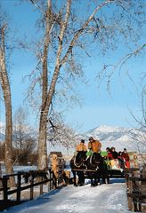 Bozeman house photo - sleigh rides on the Rockin' TJ
