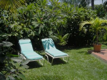 Honaunau HOUSE Rental Picture