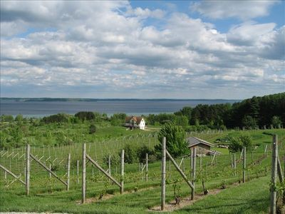 Leelanau Peninsula winery view just a short drive from the condo.