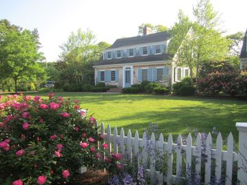 Harwich - Harwichport house rental - Manicured grounds create a resort-like feel to the exterior lawn and living area