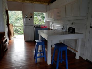 Kitchen looking out to rain forest