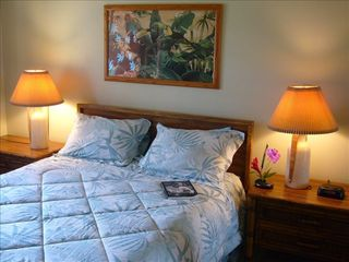 Kihei townhome photo - One of 2 bedrooms main level, queen, ceiling fan, flat screen TV/DVD/CD.