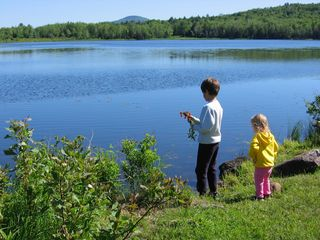 Belmont farmhouse photo - Our kids exploring the water's edge. Its a great place to fish and catch frogs.