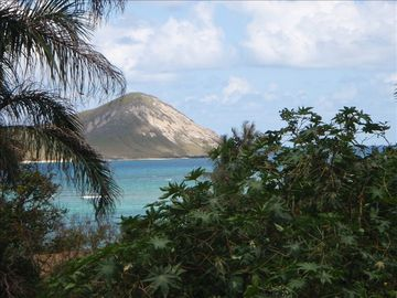Rabit Island off Oahu - short drive from Suite
