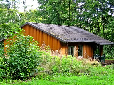 Scandinavian House in the woods - 200m to the lake