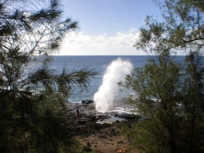 Majestic Spouting Horn and National Tropical Botanical Gardens are a short walk