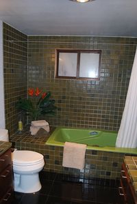 Idyllwild cabin rental - Master Bath with hotel shower head and large tub and dual sinks.